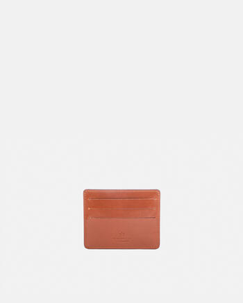 Warm and colour credit card holder with  space for banknotes